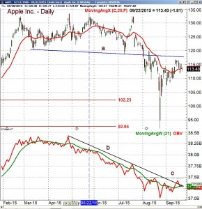 Apple AAPL Volume 4 - ViperReport.com